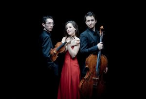 Amatis Piano Trio who will perform at Malvern Concert Club 26th November 2020 Photo Marco Borgreve